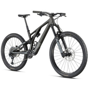2021 Stumpjumper EVO LTD